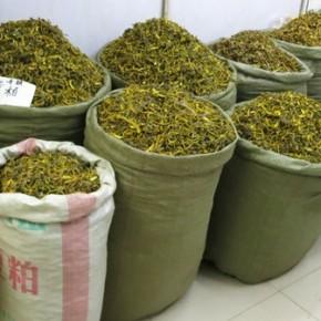 中国四川省成都の漢方薬市場調査(3月28日)